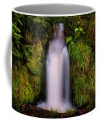 Bridal Dress. Waterfall At Benmore Botanical Garden. Nature Of Scotland Coffee Mug