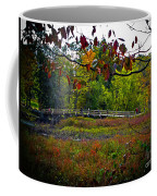 Bridge In Massachusetts Park Coffee Mug