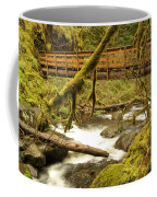 Bridge Over Paradise Coffee Mug