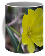 Bridges Evening Primrose Coffee Mug