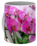 Bright And Purple Butterfly Orchids Coffee Mug