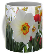 Bright Daffodils Coffee Mug