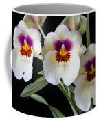 Bright Miltonia Orchids Coffee Mug