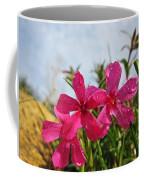 Bright Phlox Blooms Coffee Mug
