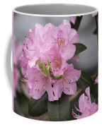 Bright Pink Azalea Coffee Mug
