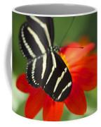 Brilliance Of Color 2047 2 Coffee Mug