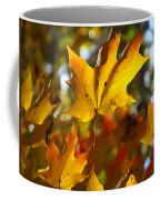 Brilliant Autumn Light And Color Coffee Mug