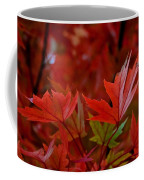 Brilliant Red Maples Coffee Mug by Linda Unger