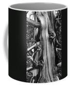 Bristle-cone Pine-2 Coffee Mug