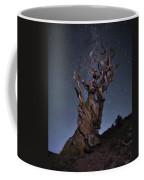 Bristlecone Ballet Coffee Mug