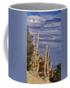 Bristlecone Warriors Coffee Mug