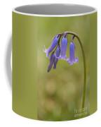 British Bluebell Hyacinthoides Non Scripta. Coffee Mug