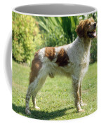 Brittany Dog, Standing Side Coffee Mug