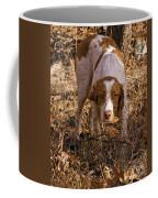 Brittany Spaniel Pixel's Pointed Woodcock Coffee Mug