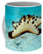 Brittle Star Fish Coffee Mug
