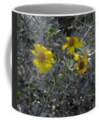 Brittlebush Flowers Coffee Mug