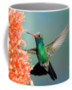 Broad-billed Hummingbird At Ocotillo Coffee Mug
