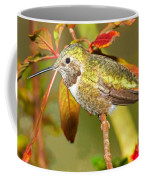 Broad Tailed Hummingbird Coffee Mug