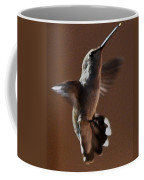 Broadtail Female Anna In Flight  Coffee Mug