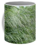 Brome Grass In The Hay Field Coffee Mug