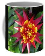 Bromelaid Coffee Mug