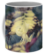 Bromeliaceae - Alcantarea Geniculata Coffee Mug