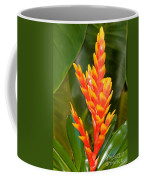 Bromeliad Flower Coffee Mug