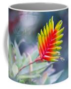 Bromeliad Symphony  Coffee Mug