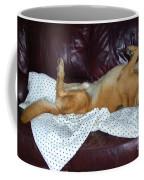 Bronson And His Ball Coffee Mug