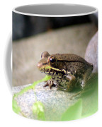 Bronze Frog Coffee Mug
