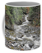 Brook In October Coffee Mug
