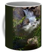 Brook Of Tranquility Coffee Mug