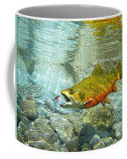 Brook Trout And Artificial Fly Coffee Mug