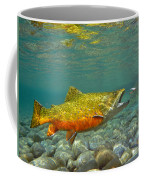 Brook Trout And Coachman Wet Fly Coffee Mug