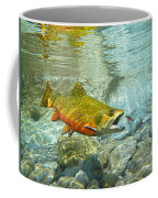 Brook Trout And Silver Doctor Coffee Mug
