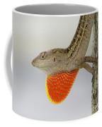 Brown Anole II Coffee Mug