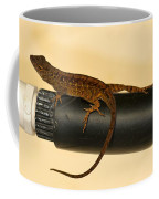 Brown Anole On Pipe Coffee Mug