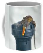 Brown Anole With Dewlap Coffee Mug