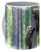 Brown Bear Climbing Lesson Coffee Mug