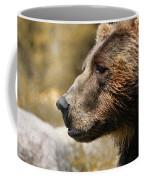 Brown Bear Golden Morning Coffee Mug