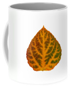 Brown Green Orange And Red Aspen Leaf 1 Coffee Mug