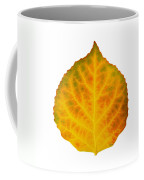 Brown Green Orange Red And Yellow Aspen Leaf 3 Coffee Mug