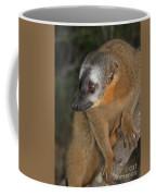 brown Maki Madagascar 2 Coffee Mug