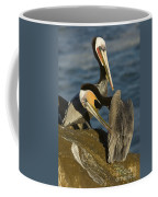 Brown Pelicans Coffee Mug