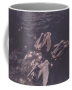 Brown Pelicans Coffee Mug
