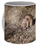 Brown Rat Coffee Mug