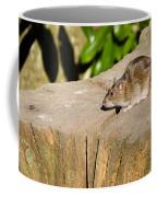 Brown Rat On Log Coffee Mug