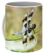 Brown Striped Double Winged Dragonfly Coffee Mug