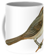 Brown Towhee Coffee Mug by Anonymous