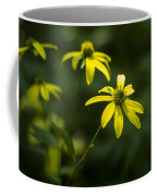Browneyed Susan Coffee Mug